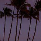 rising big (Hawaii's Supermoon) 5.5.12 by Angelika Sielken