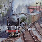 Peppercorn A2 Pacific Blue Peter. by Mike Jeffries