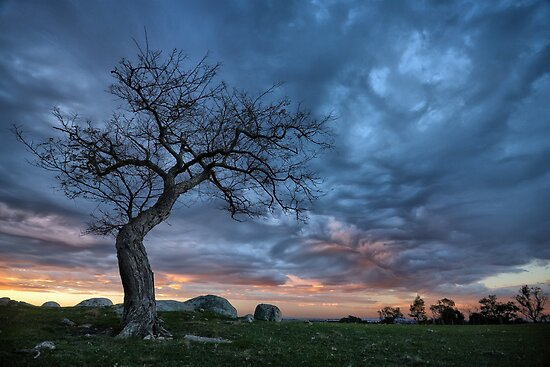 Spooky Sky by John Conway