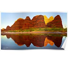 Picaninny Reflections Poster