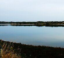 Greenough Rivermouth 1 by AlisonOneL