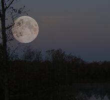 Super Moon 2012 by barnsis