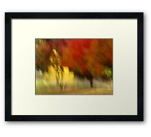 My Autumn View Framed Print