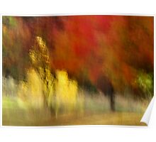 My Autumn View Poster