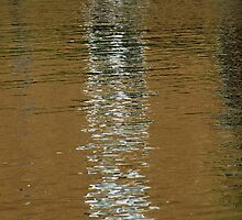 Rippling Reflection by Lennox George