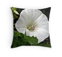 Imbutino Throw Pillow