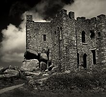 Carn Brea Castle by Country  Pursuits