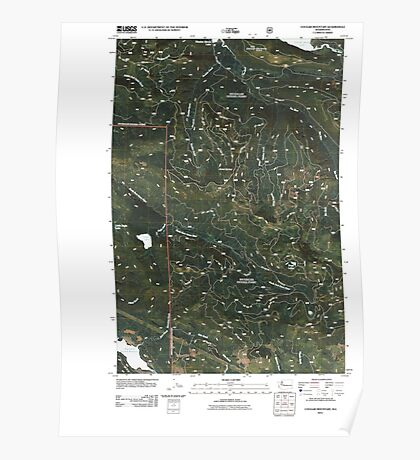 USGS Topo Map Washington State WA Cougar Mountain 20110428 TM Poster