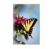 Out of the Blue Butterfly Art Print