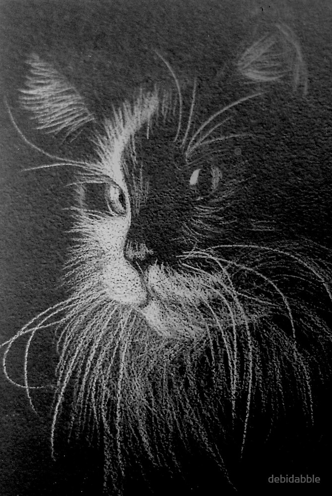 Black and White Beauty by debidabble