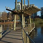 Roma Street Parklands Jetty Brisbane by PhotoJoJo