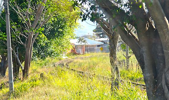 Costa Rica Railroad by Mc240