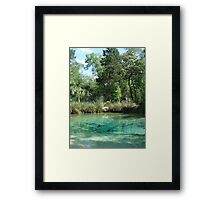 PITT SPRING, May 2012 - IT'S ALIVE! Framed Print
