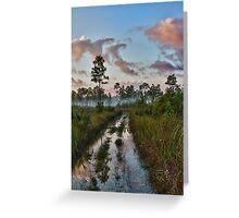 Everglades Sunrise Greeting Card