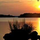 Inks Lake State Park Sunset by NewLayer