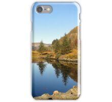 Vibrant Scotland iPhone Case/Skin