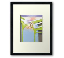 Air and Land Framed Print
