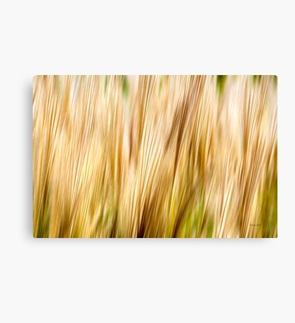 Nature Abstract Canvas Print