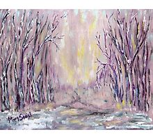 DAZZLING WINTER  Photographic Print