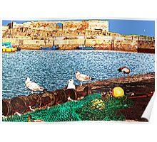 Dunbar Harbour  Poster