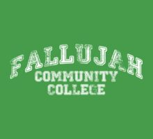 Fallujah Community College by five5six