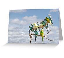 Parakeets perched on a branch againts a cloudy blue sky Greeting Card