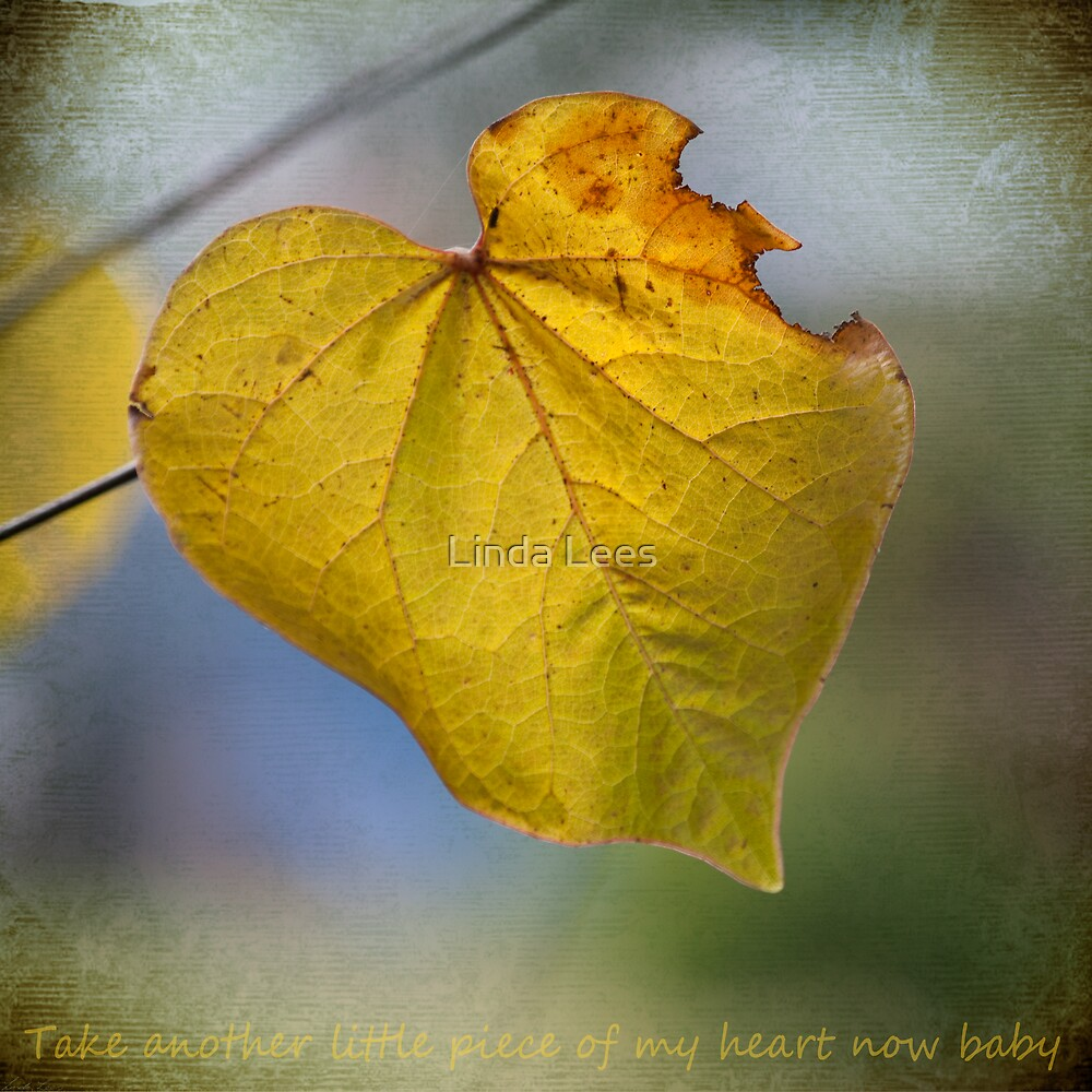 Take another little piece of my heart by Linda Lees