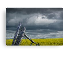 Canola Field in Southern Alberta Canvas Print