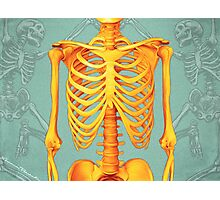 Skeleton Photographic Print