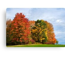 Autumn Colors Fall Trees Landscape Art Canvas Print