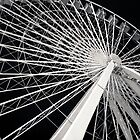 Chicago Black Series--The Wheel of Plenty by Damian  Christopher Photography