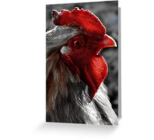 Red Rooster color select Greeting Card