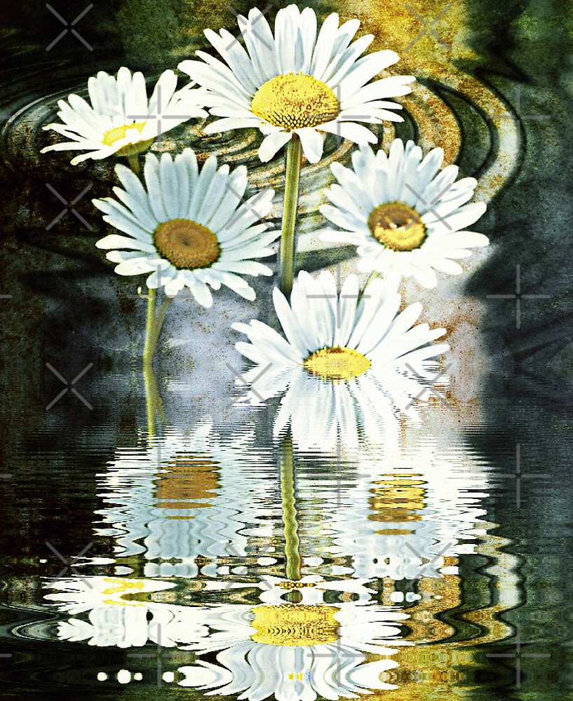 Reflections of Narcissus  by Scott Mitchell