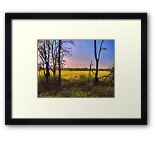 Morning Field Framed Print