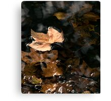 Autumn Leaves - Surface Water Tension Canvas Print