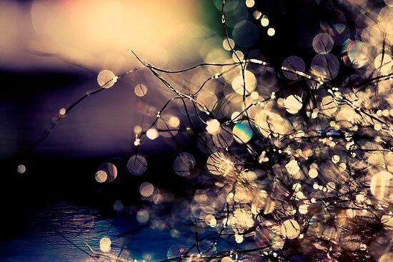 Where fairies dream. by Beata  Czyzowska Young