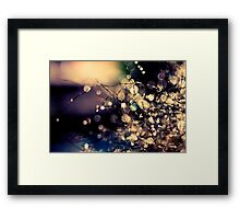 Where fairies dream. Framed Print