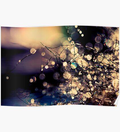 Where fairies dream. Poster