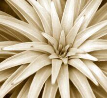 Spiral Abstract Art Monochrome Plant Sticker