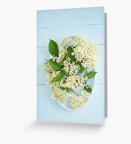 Elderflowers on a blue plate Greeting Card