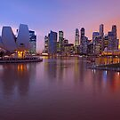 Marina Bay, Singapore At Dusk. (2) by Ralph de Zilva