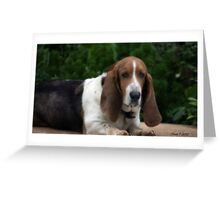 Mister Greeting Card
