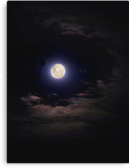 Super Moon on the Wane by Anne van Alkemade