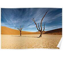 Lifeless in Deadvlei Poster