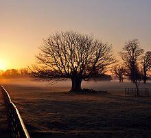Event Horizon by Simon Pattinson