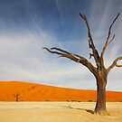 Deadvlei by muzy