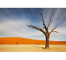 Deadvlei Photographic Print