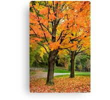 Colorful Autumn Trees Landscape Art Canvas Print