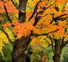 Colorful Autumn Trees Landscape Sticker