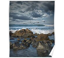 Pelicans over the surf on Coronado Poster